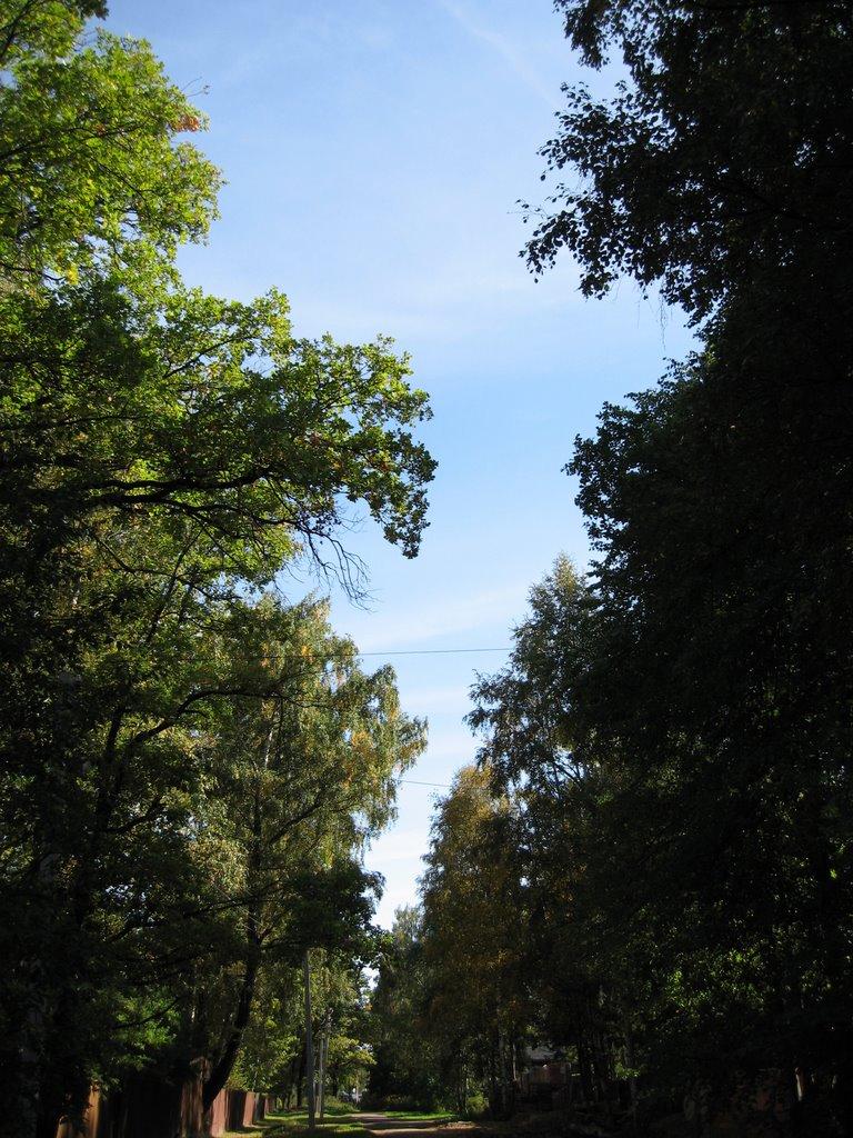 Lesnoy Gorodok, Лесной Городок