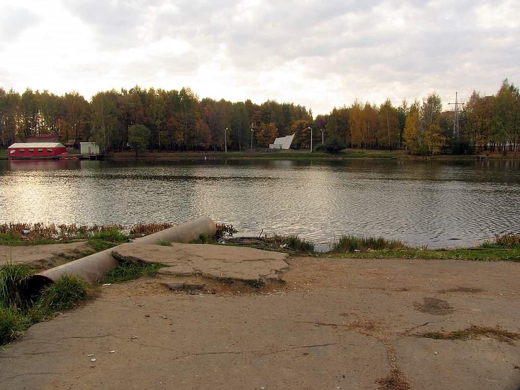 Лобненский городской пруд, Лобня