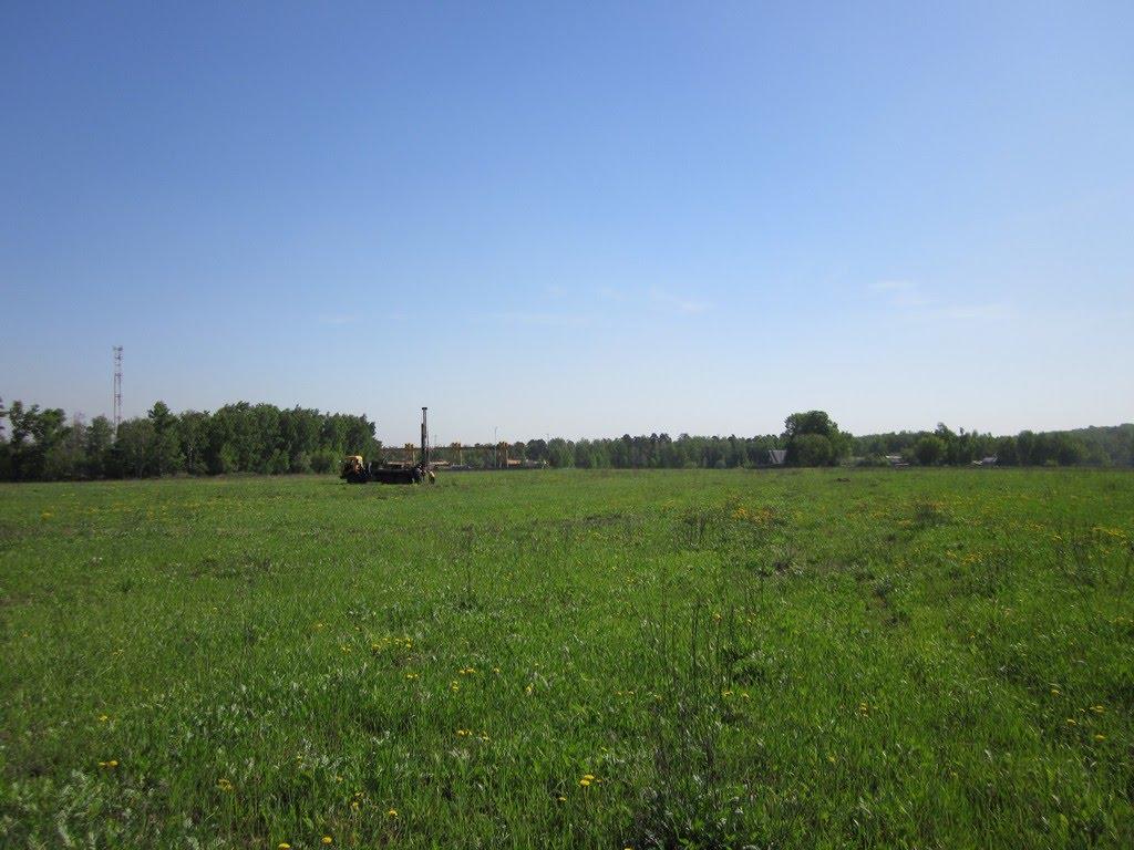 поле, Октябрьский