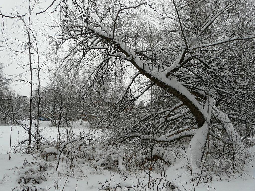 Зима в Челюхе, Черкизово