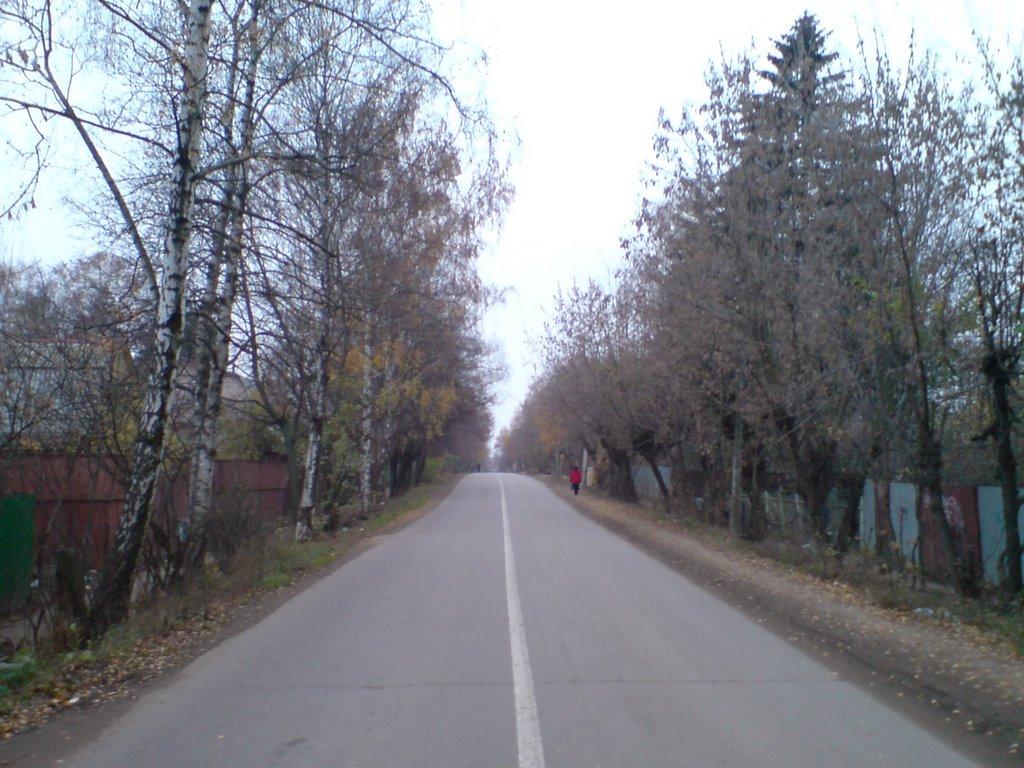 дорога к университету, Черкизово