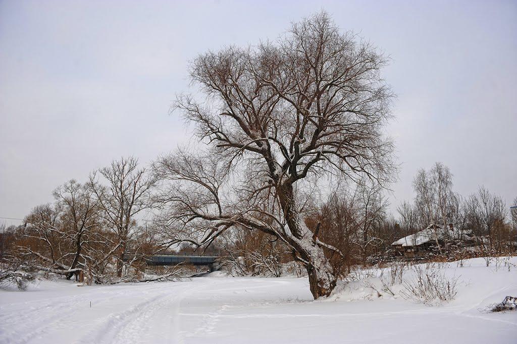 январь на Лопасне, Чехов