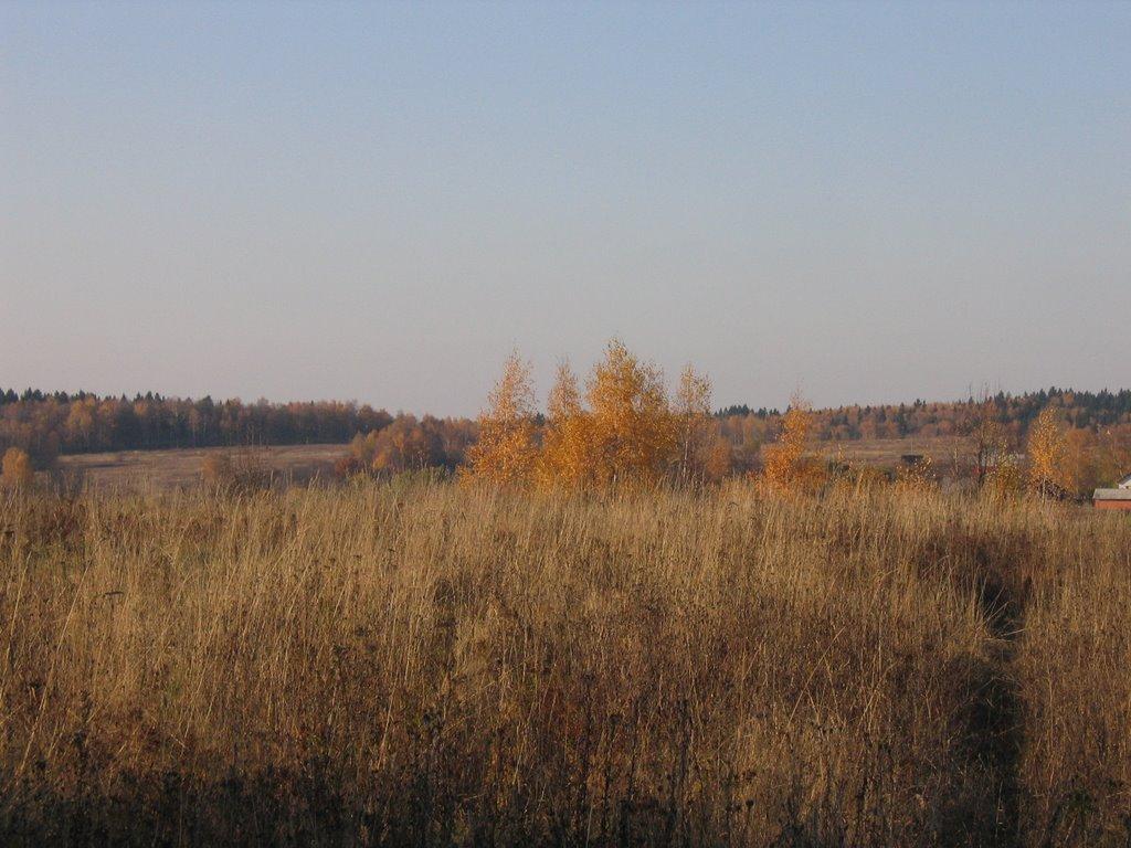 шараповское поле, Шарапово