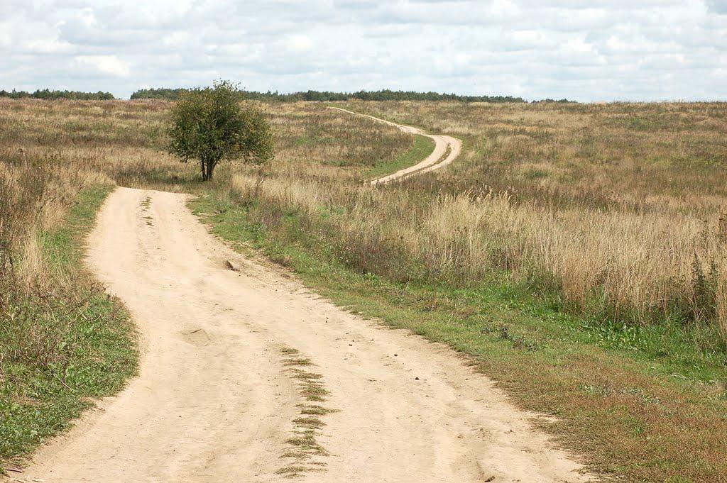 Road, Шарапово