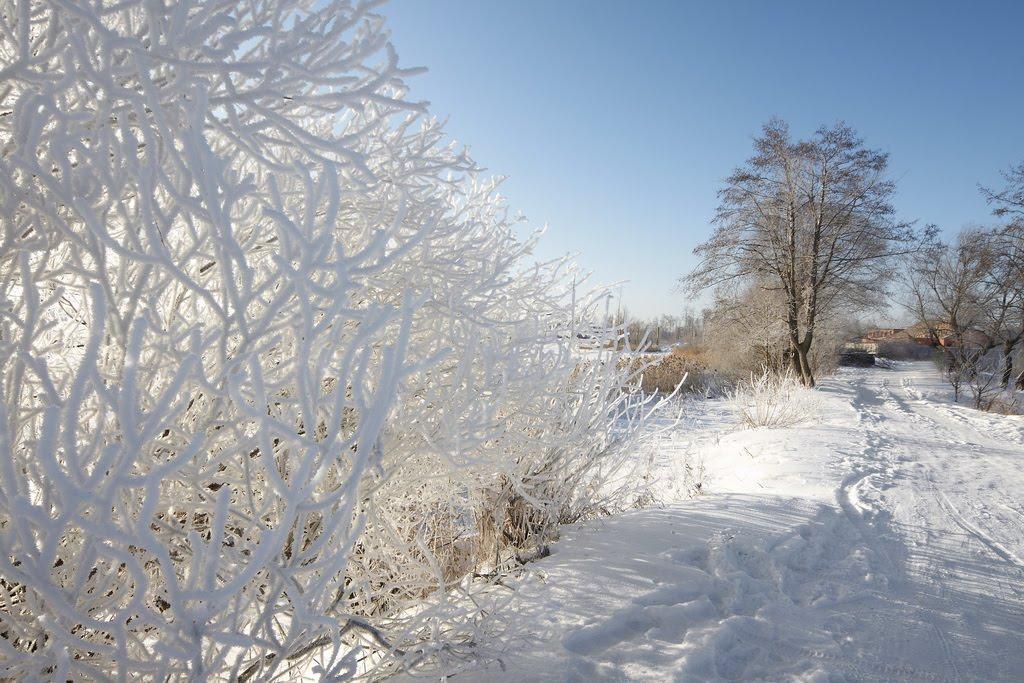 Белый берег, Шатура
