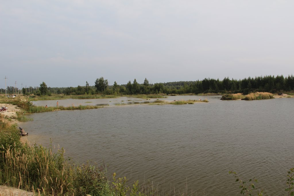 12 поселок водоем 2013, Шатурторф