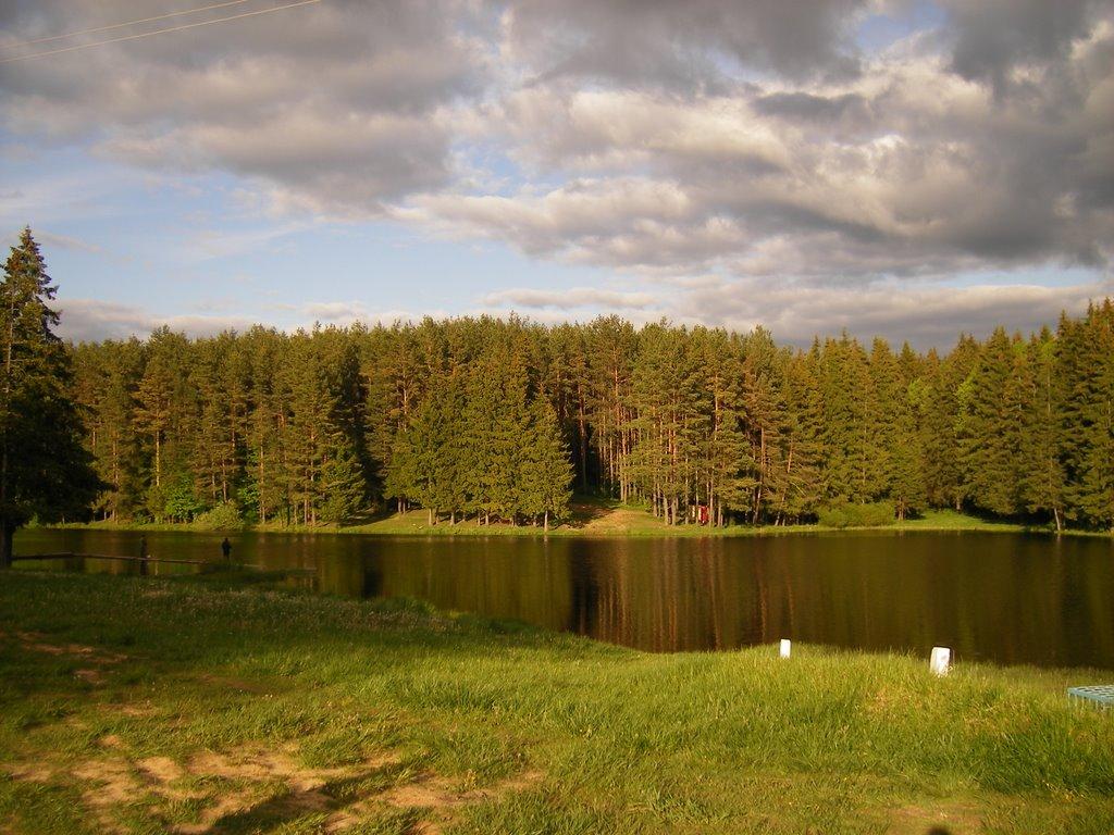 Плотина, Шаховская
