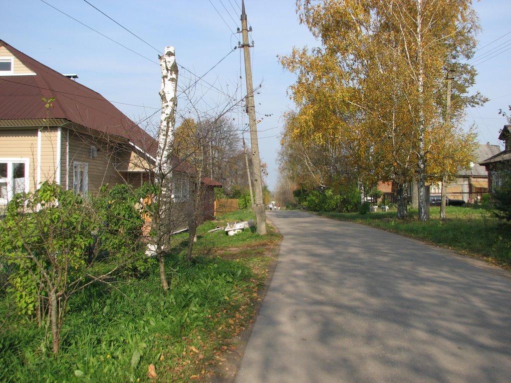 Осень., Шаховская