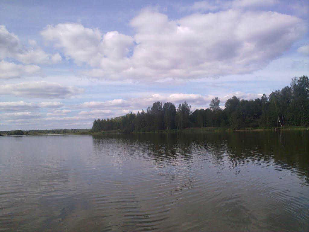 Залив, Шаховская