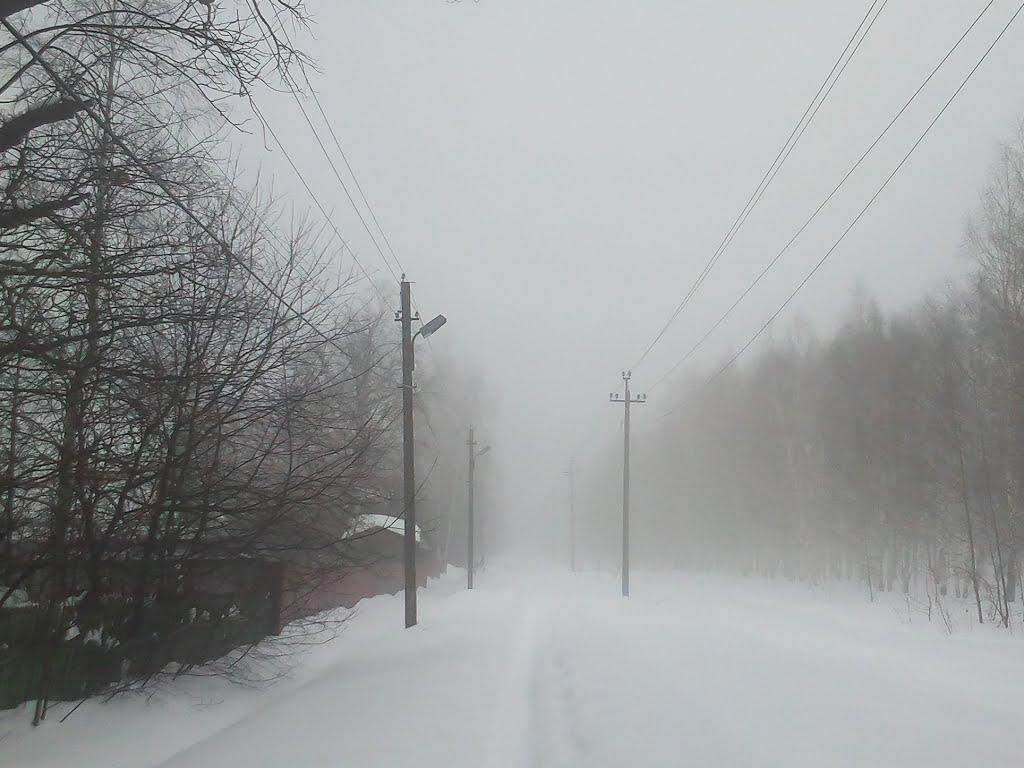 Туман, Шереметьевский