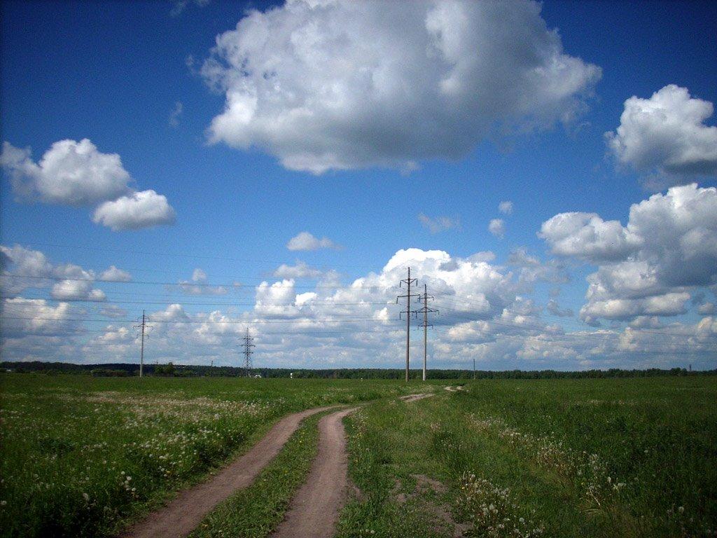 На поле, Щелково