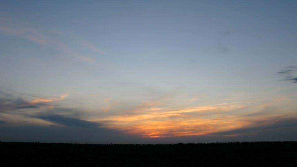 Evening field / Поле. Вечером., Щербинка