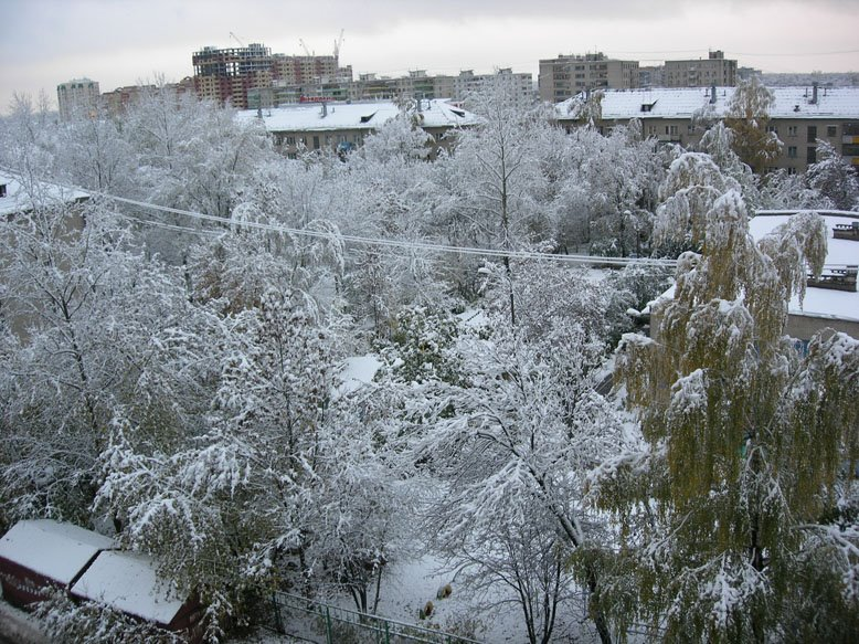Town in snow, Электросталь