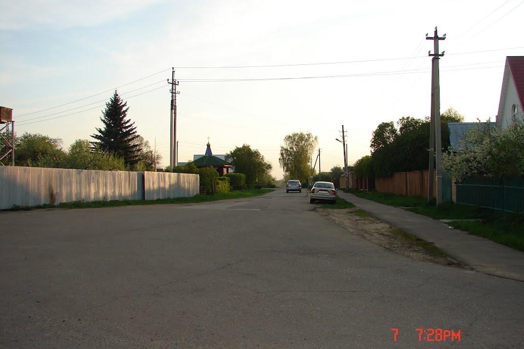 д. Исаково, вид на ул. 1-ая центральная, Электроугли