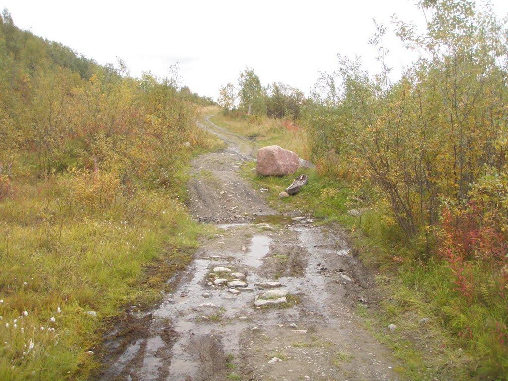 """Велотрасса """"Лапландия"""", ручей между сот. Сельский строитель и п.Кильдинстрой, Кильдинстрой"""