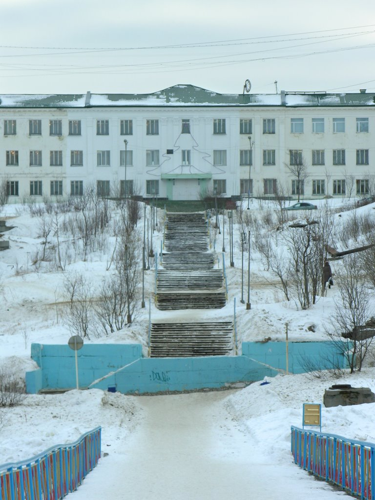 School №1 of a name of M.A. Pogodin, Полярный