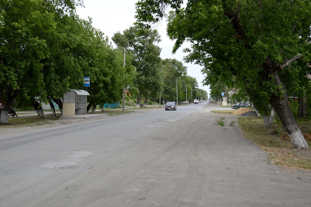 Улица Советов., Купино