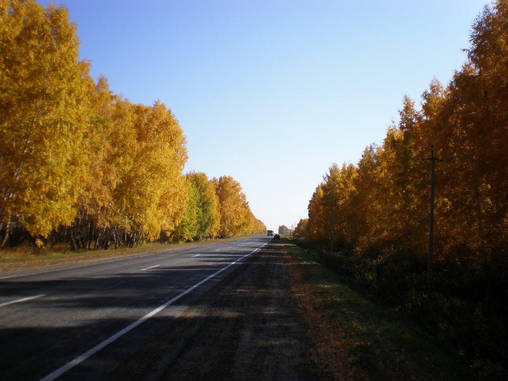 doroga, Нововаршавка