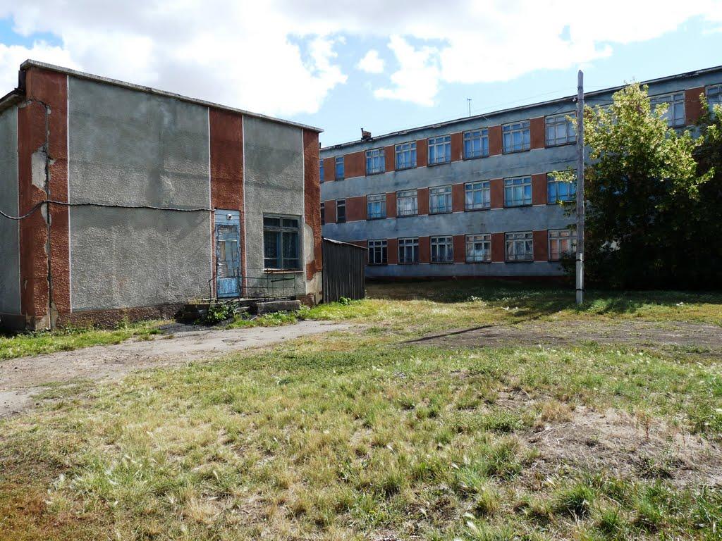 Задний двор, Павлоградка