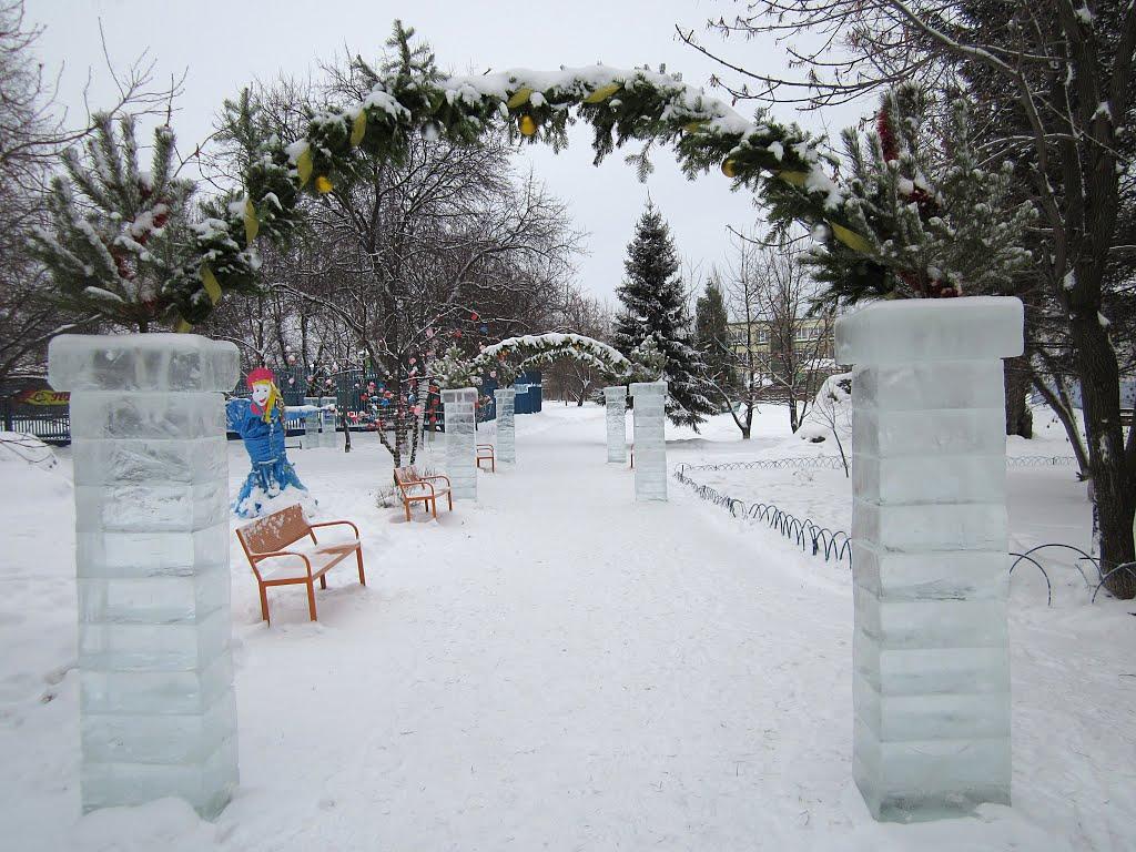 Тарский городской парк, Тара