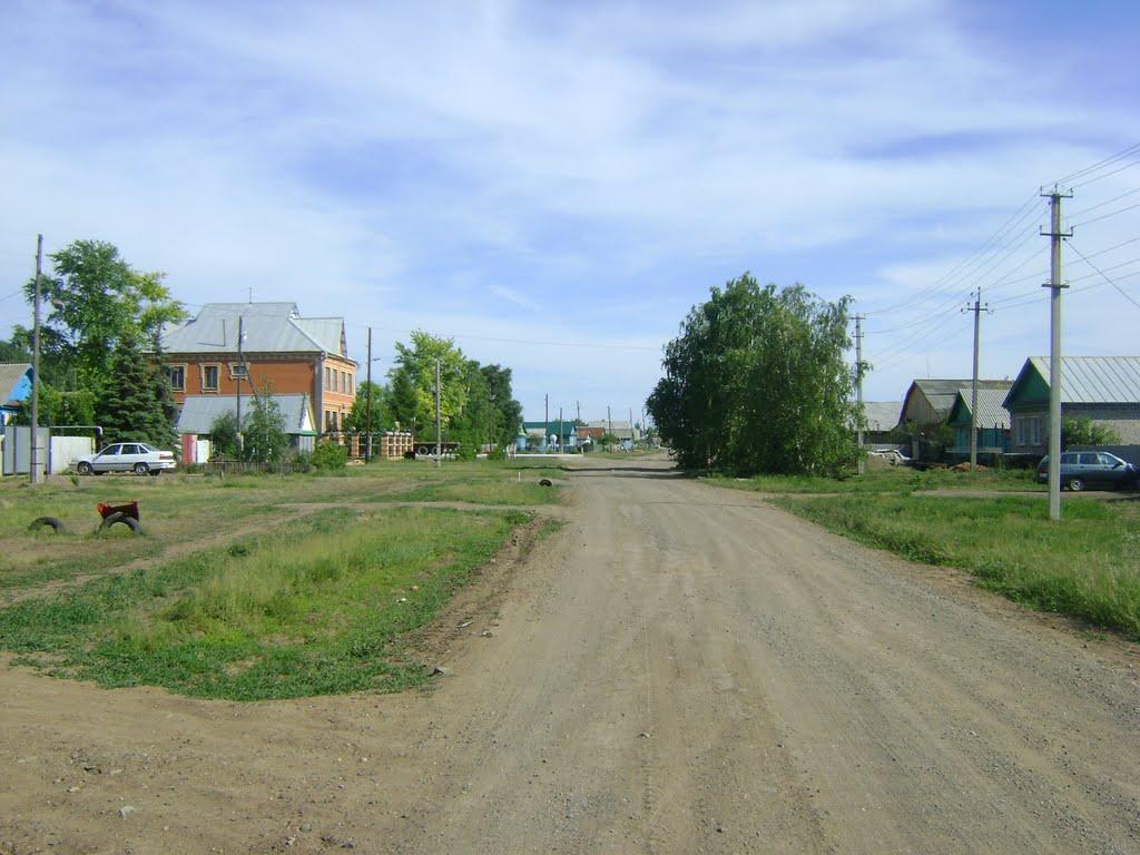 улица Парковая, Саракташ