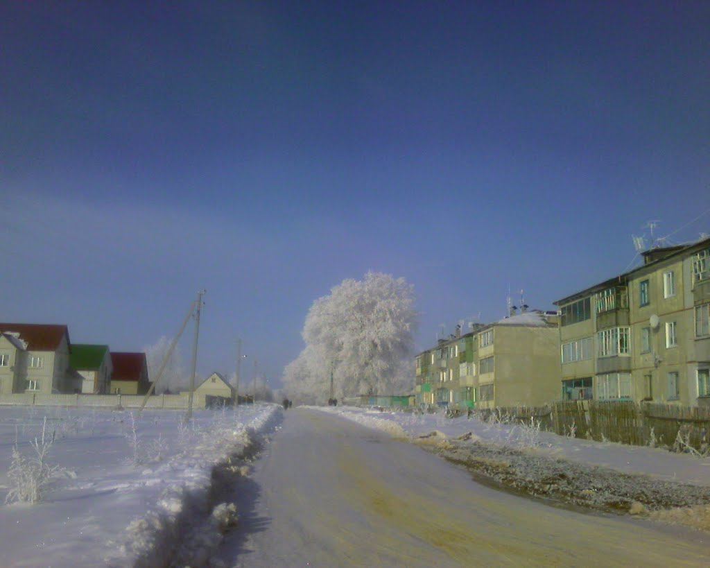 Зимний день, Верховье