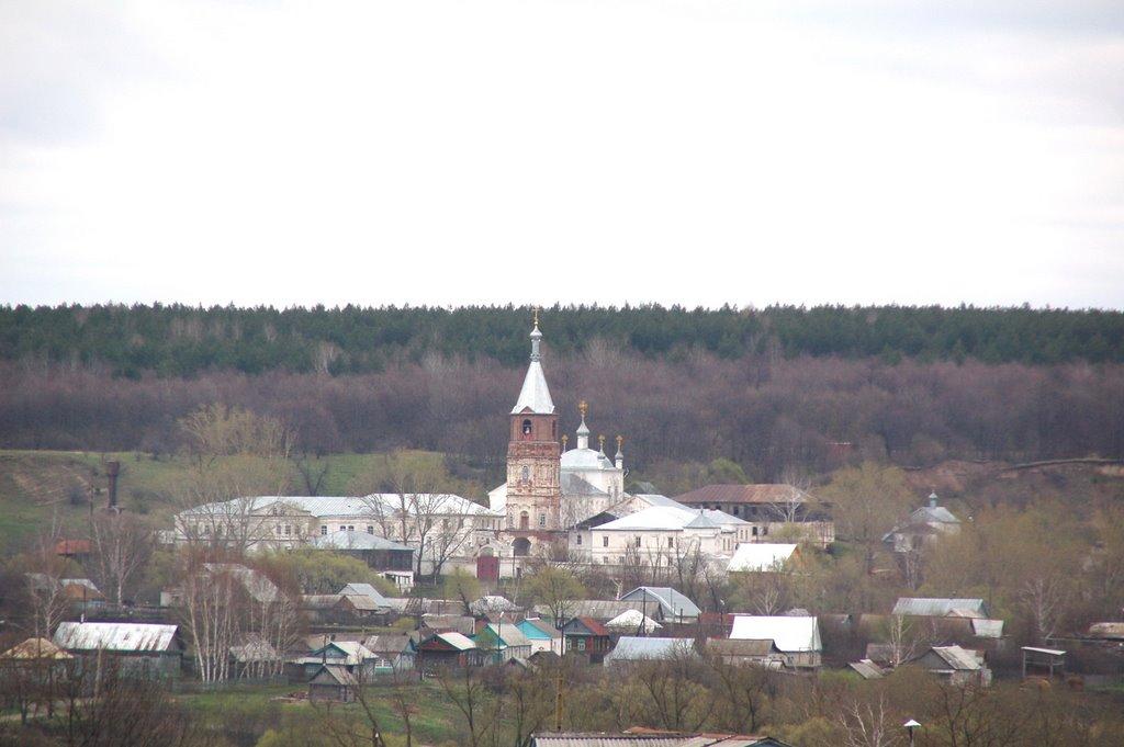 Вид на монастырь ул.Максютова, Вадинск