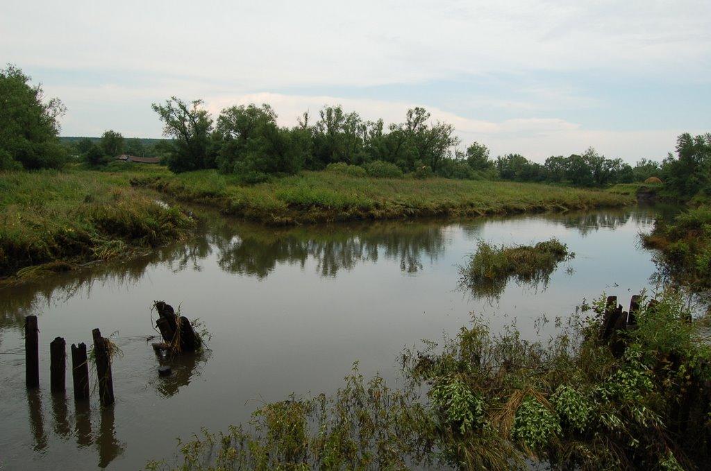 Река Вад, Вадинск