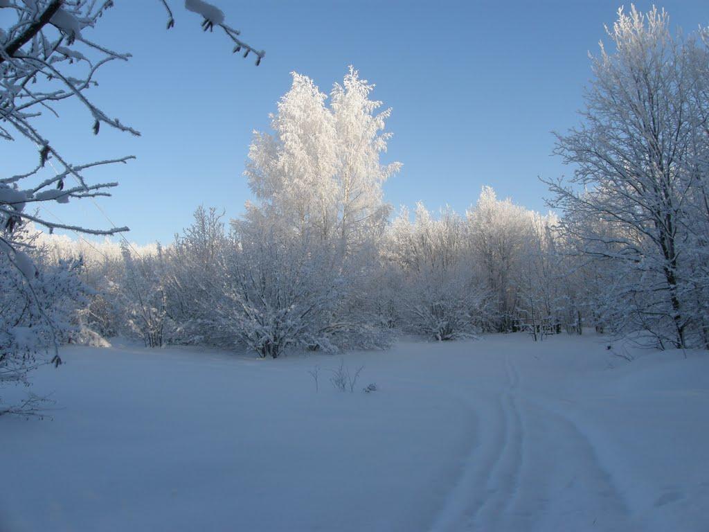 русская зима, Каменка