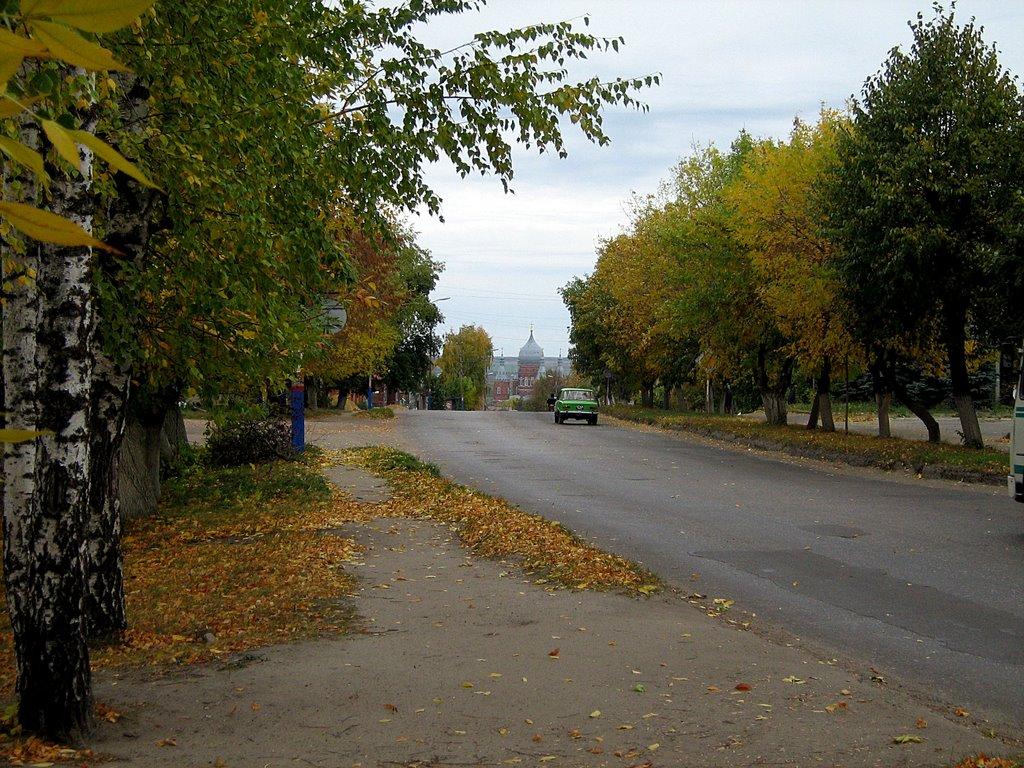 Улицы родного города, Сердобск