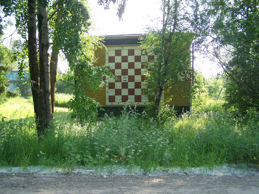 Шахматная доска на канторе, Керчевский