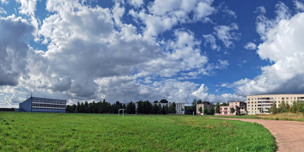 травка, небо и бассейн(август 2011), Пикалёво