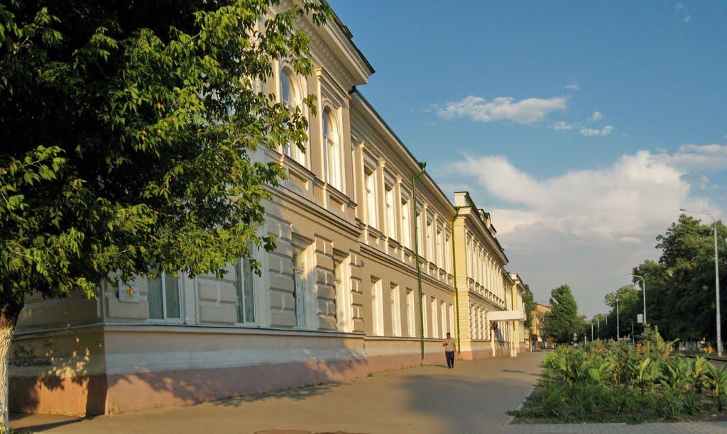 Гимназия, Александровская