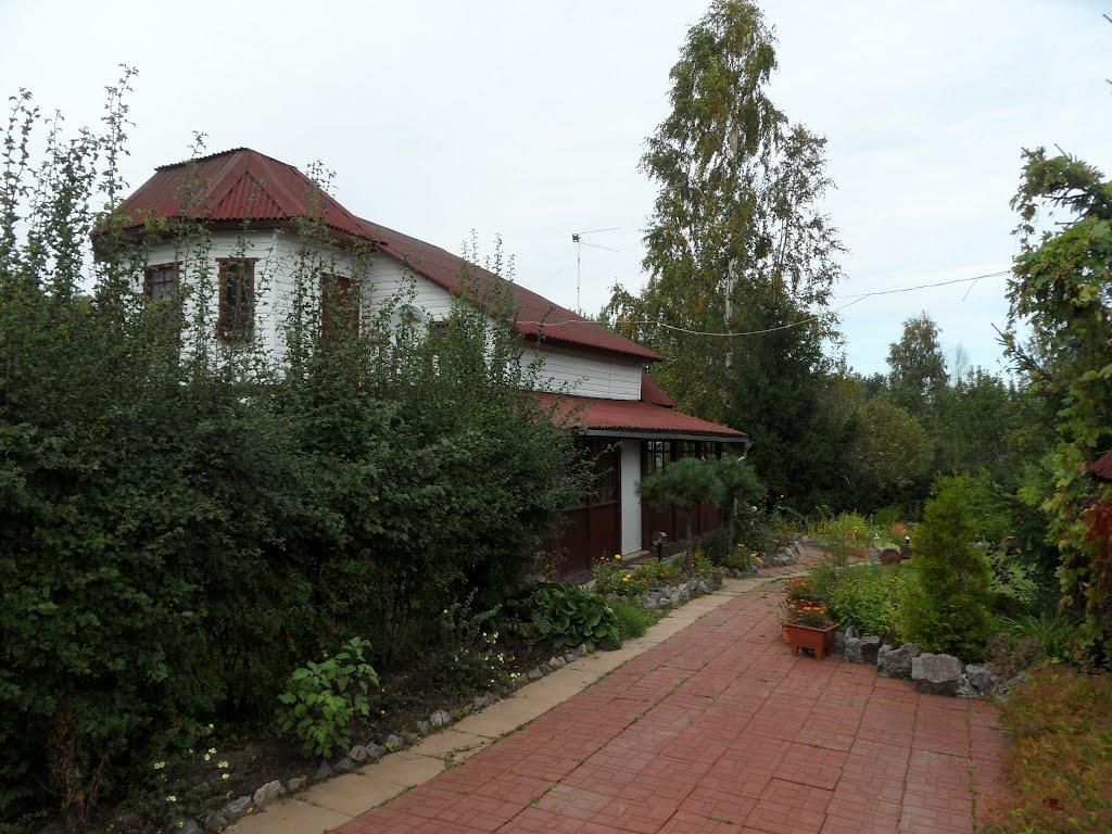 Дачный дом в Большой Ижоре, Большая Ижора