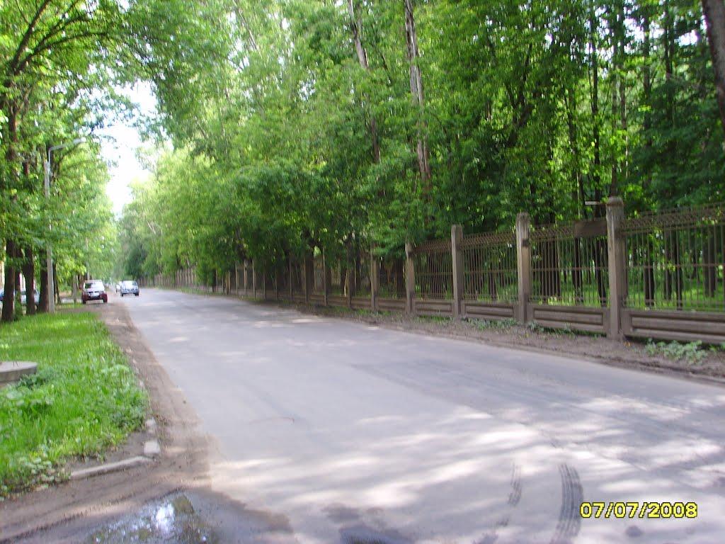 Дорога у парка Волхов-2, Волхов