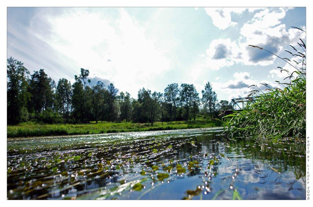 Дикие берега реки Оредеж, Вырица, Ленинградская область, Вырица