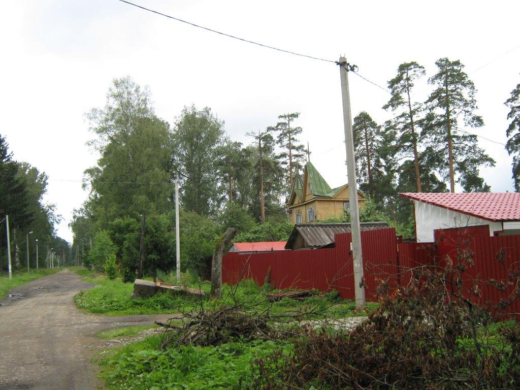 Ул. Белинского, дом 16., Вырица