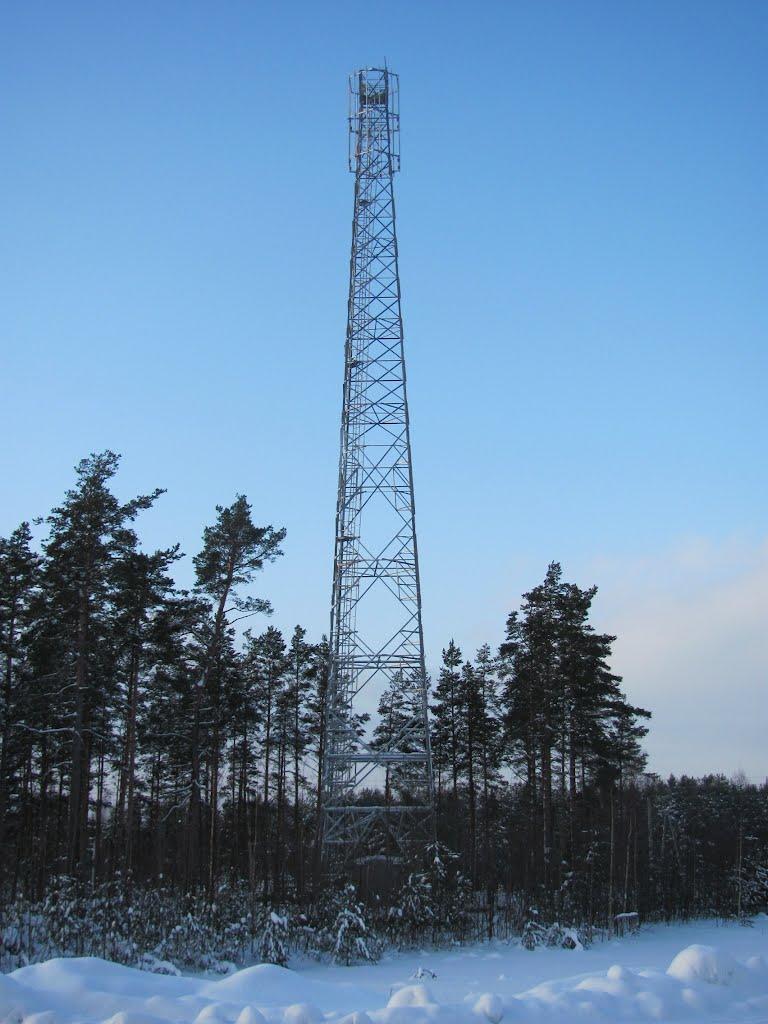 Башня Линк Девелопмент в г.Высоцк (юг) Выборгский р-н, Высоцк