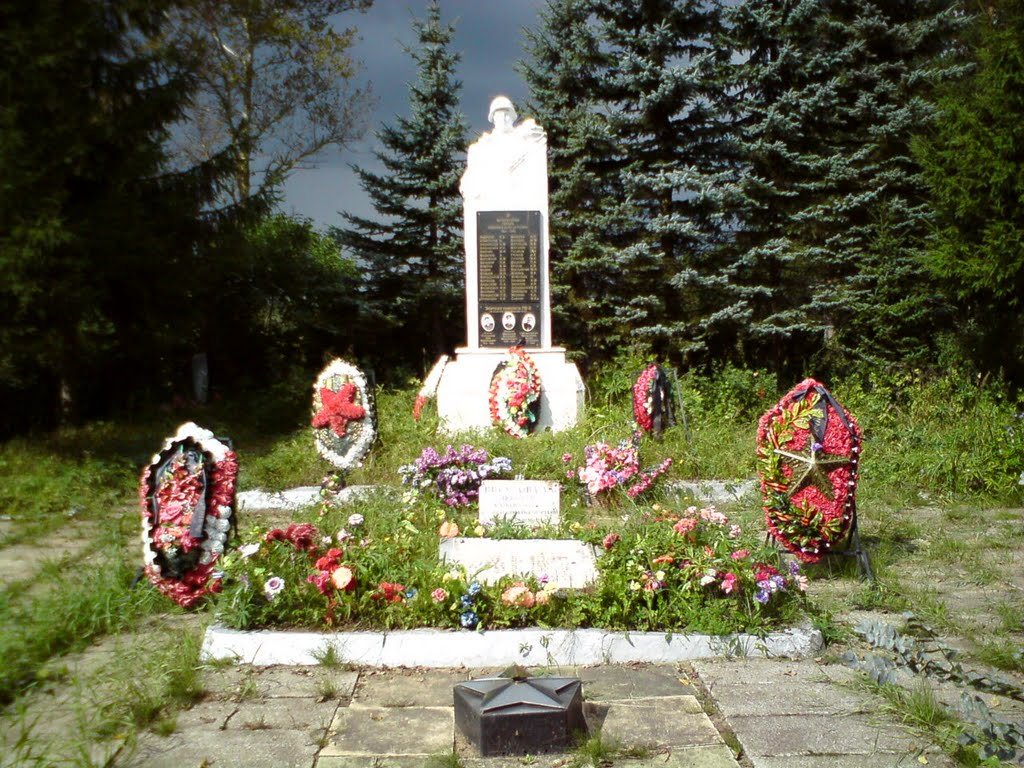 Мемориал героям Второй Мировой войны в п.Дружная Горка, Дружная Горка