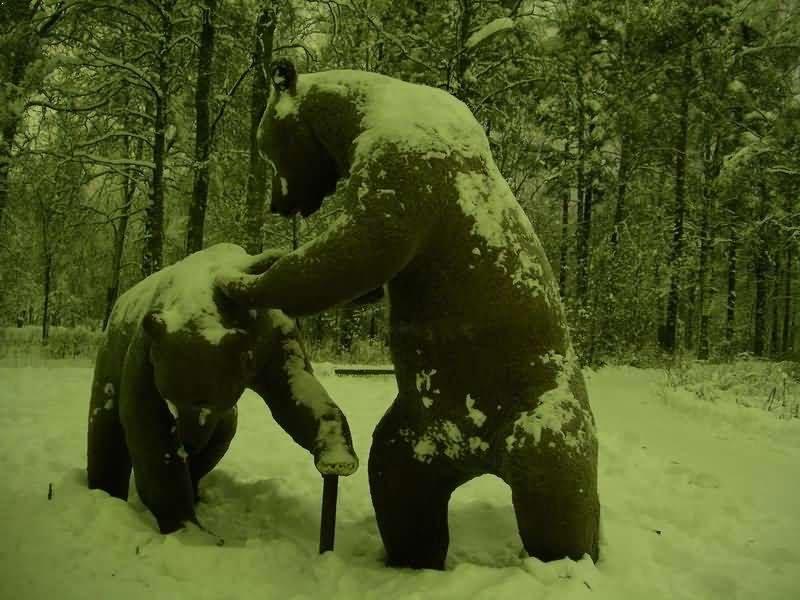 Два медведя, Каменногорск