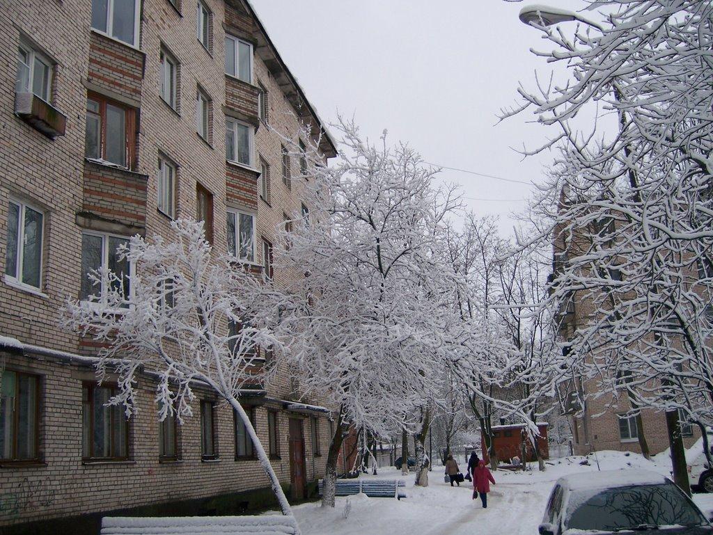 Кингисепп, ул.Октябрьская, 20  (24.12.2008), Кингисепп