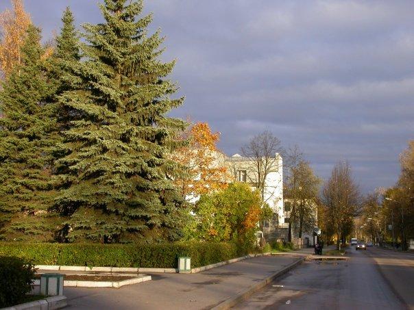 Улица Ленина, Лодейное Поле
