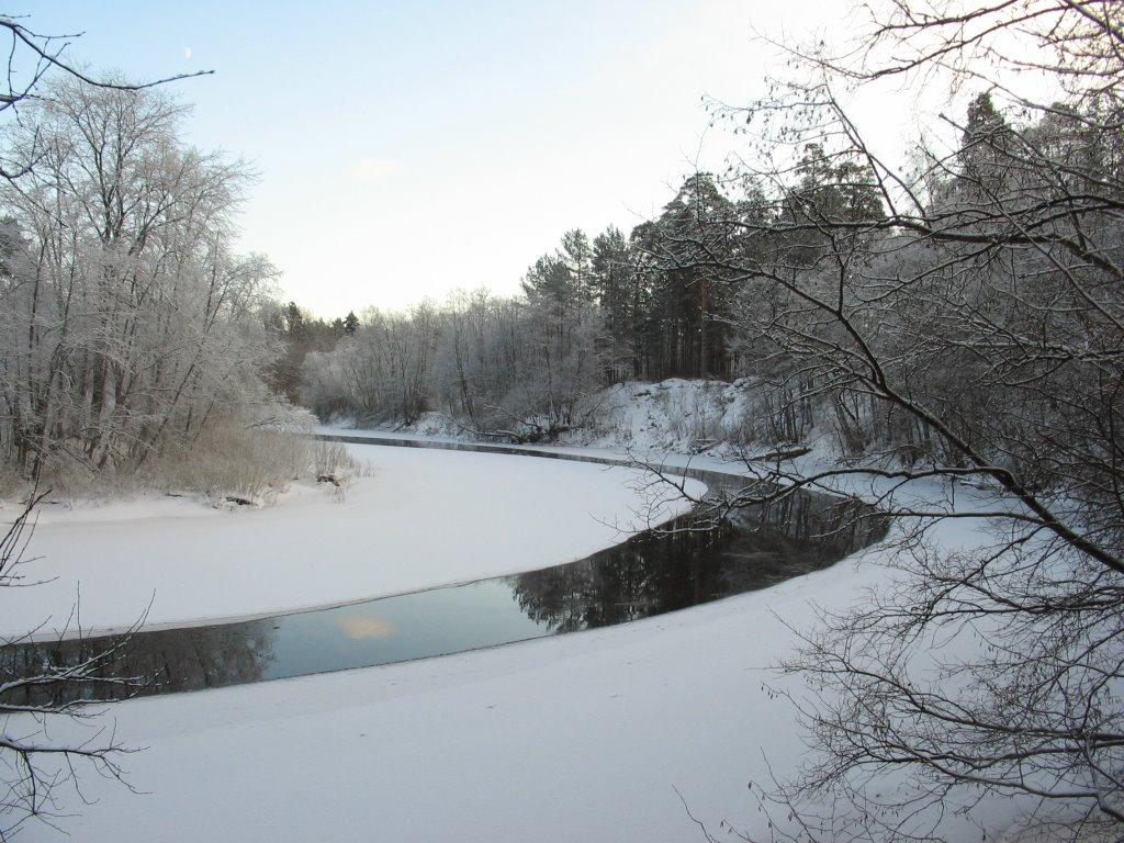 River curves (1), Луга