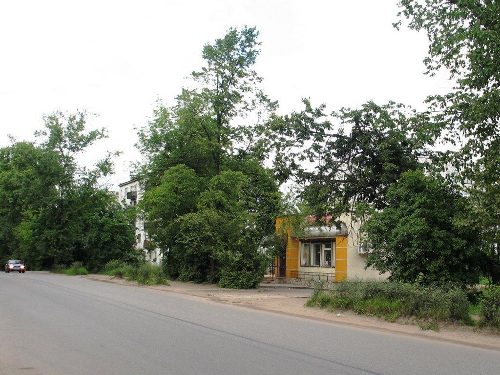 г.Луга. Июль 2008 года, Луга