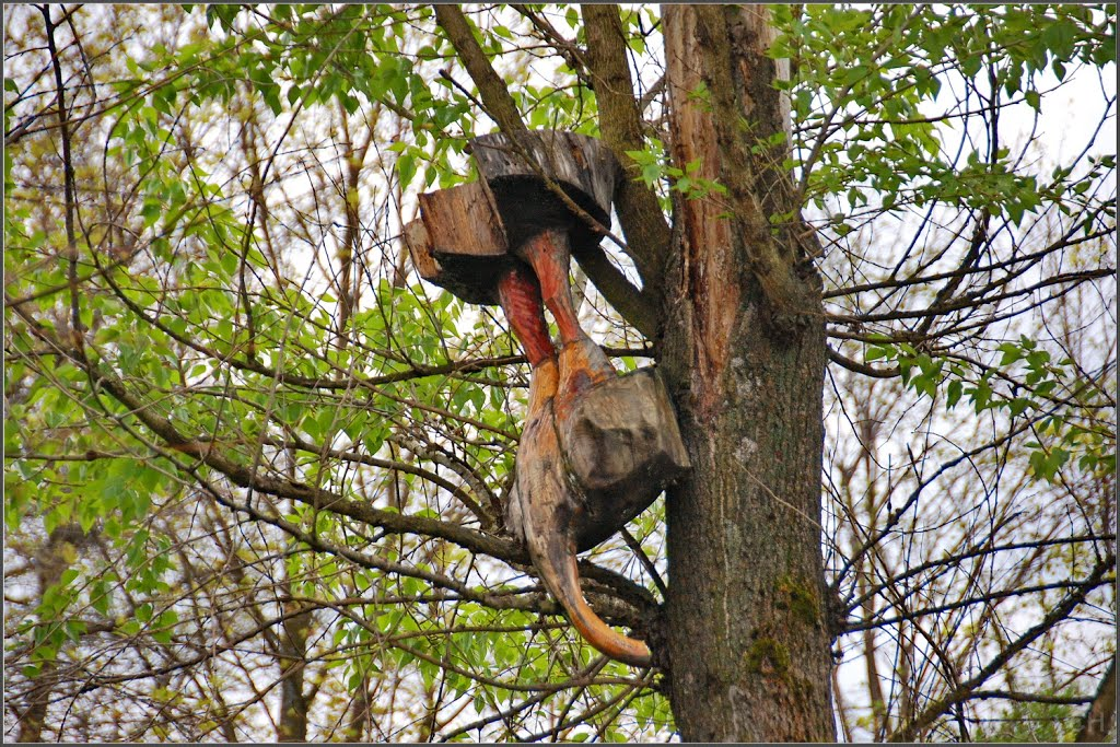 Луга.  Часть скульптуры на дереве, Луга