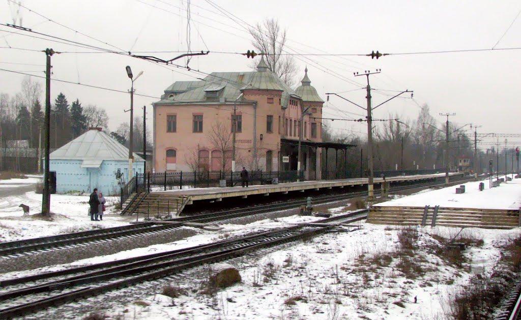 Станция Парголово, вокзал., Парголово