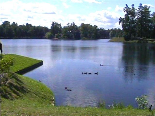 Peterhof - il parco, Петродворец