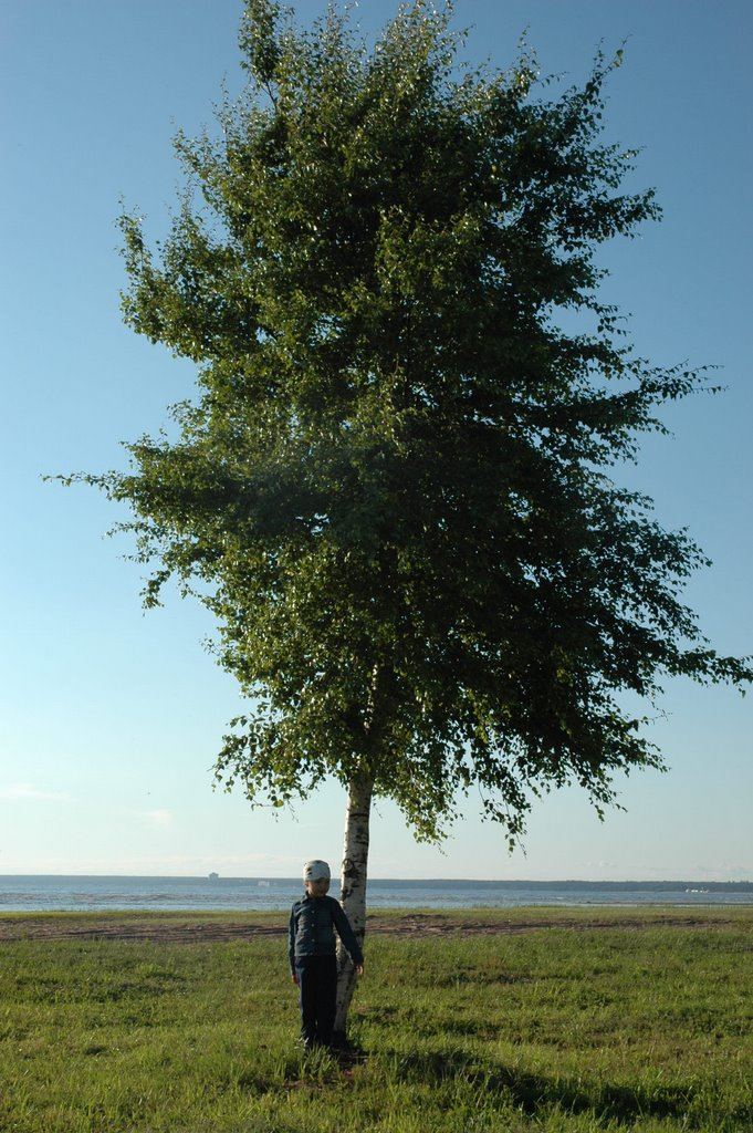 Wood and Dasha, Сестрорецк