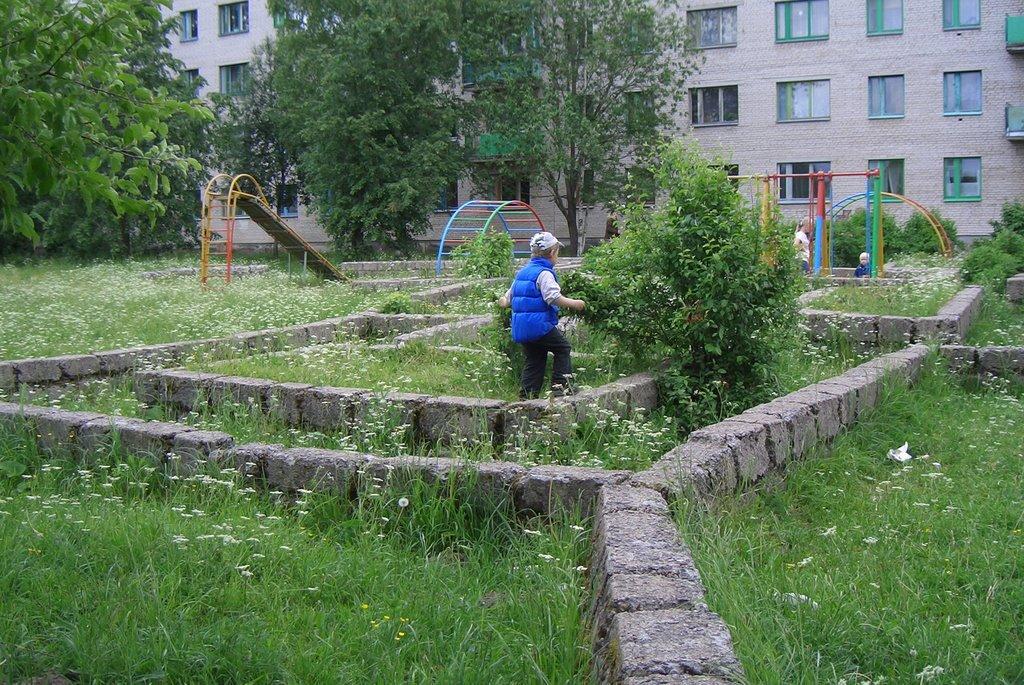 Labirint, Сланцы