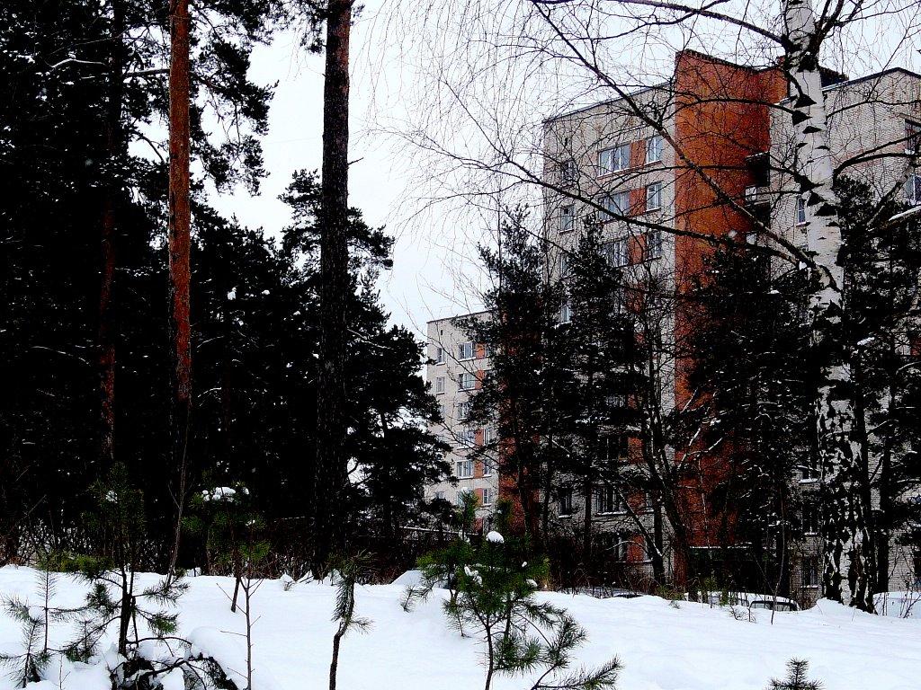 Дома на Космонавтов, Сосновый Бор